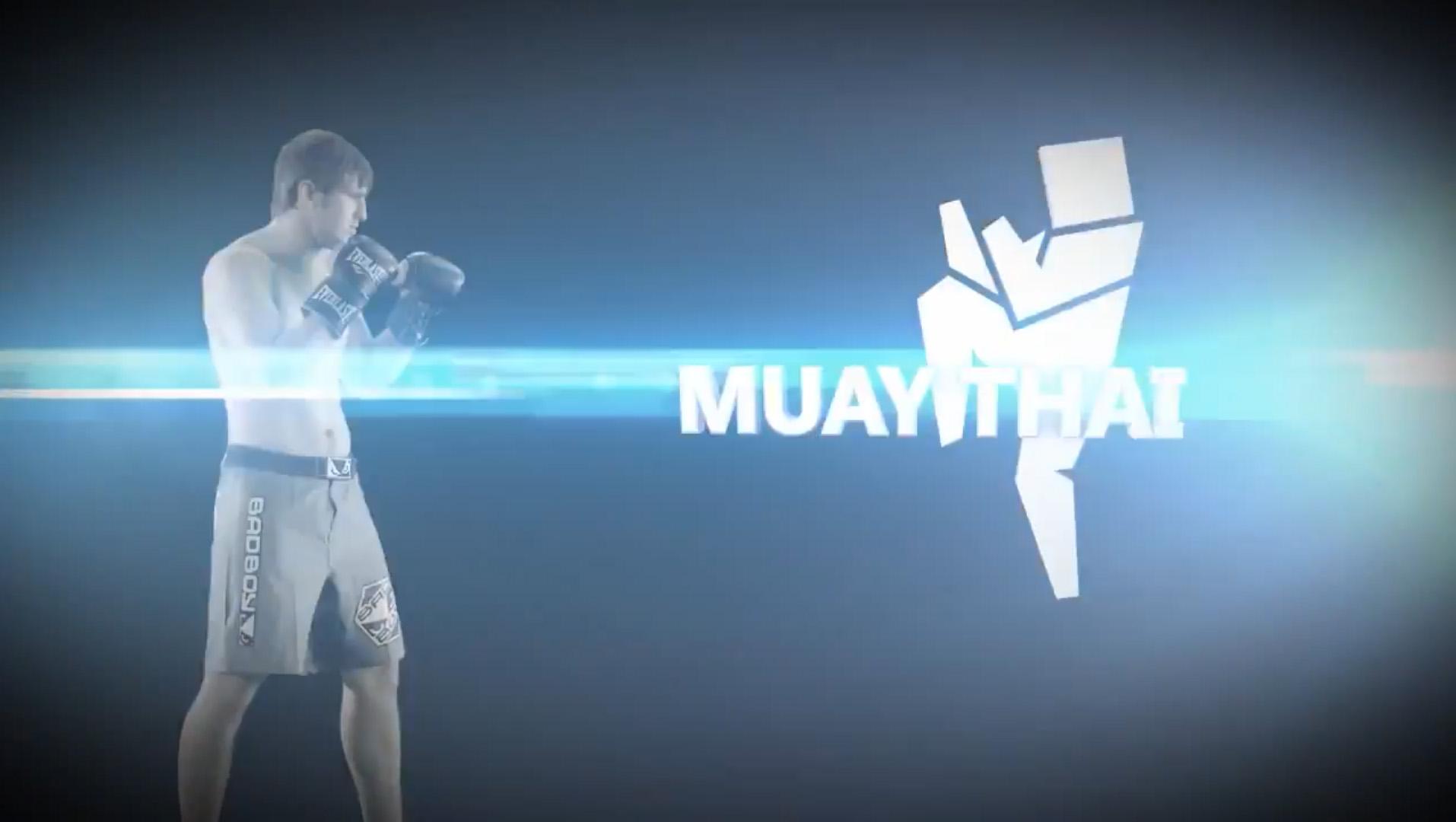 Международные игры боевых искусств